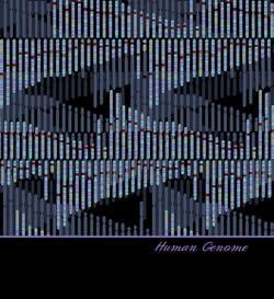 Human Genome Scarf (Black & Teal)