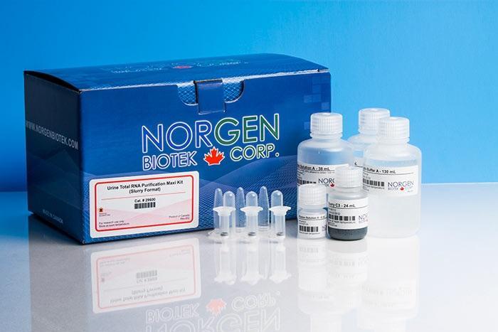 Urine Total RNA Purification Maxi Kit (Slurry Format) (Cat. 29600, 29650)