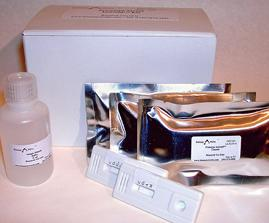Iso-Gold Rapid Mouse – Monoclonal Isotyping Kit