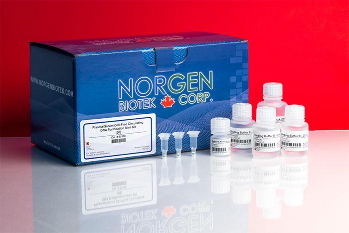Plasma/Serum Cell-Free Circulating DNA Purification Midi Kit